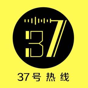 37號熱線
