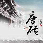 05【唐朝】唐砖(军事)