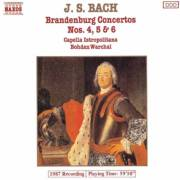 07 Brandenburg Concerto No. 6 in B flat major, BWV 1051- 1.Moderato