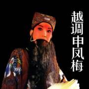 河南地方戏之越调--申凤梅经典原声