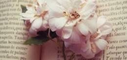 春光無限好,一起來聽書