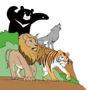 第353集-疯狂的动物3