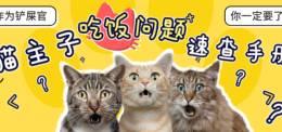 猫以食为天!猫主子吃饭问题速查手册