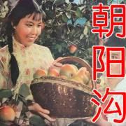 豫剧《朝阳沟》63版经典全集唱段