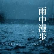 雨聲催眠 大自然的聲音 自然聲音