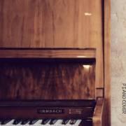 【钢琴】玫瑰先生-昼夜