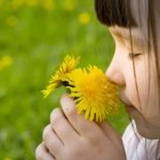 花为什么有香味?