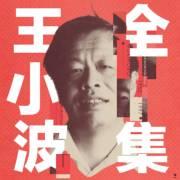 王小波全集   《黃金時代》《沉默的大多數》等生平作品