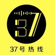 37号热线