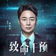 致命干预 刘奕君&赵岭&季冠霖&赵毅联袂演播 精品有声剧