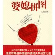 长篇都市家庭伦理小说《婆媳拼图》